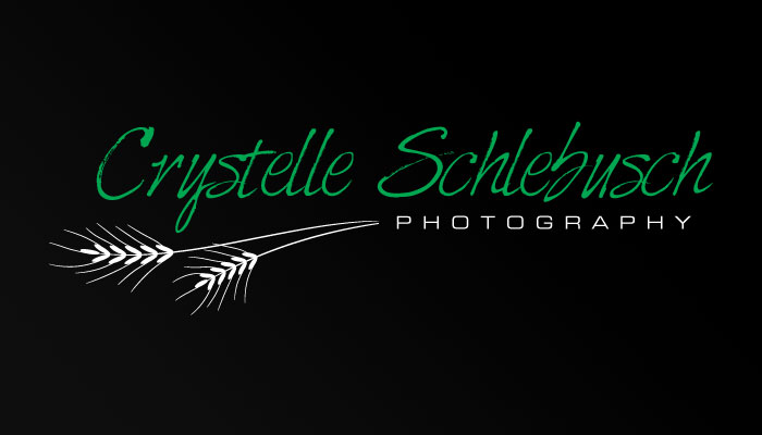 Crystelle Schlebusch Photography Logo
